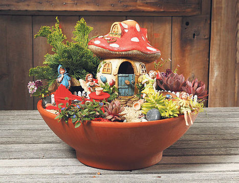 Fairy gardens: Small sites suit sprites | Container Gardening | Scoop.it