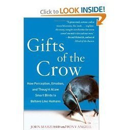 Gifts of the Crow: How Perception, Emotion, and Thought Allow Smart Birds to Behave Like Humans (by John Marzluff, Tony Angell) | CxBooks | Scoop.it