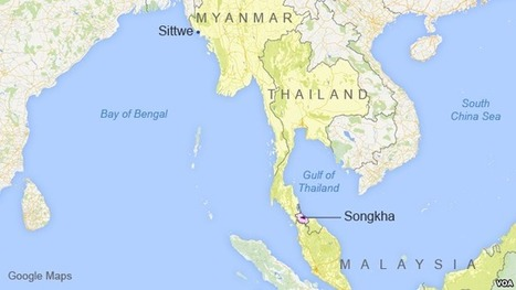 Thailand: More Work Needed to Bust Rohingya Trafficking Ring | Wildlife Trafficking: Who Does it? Allows it? | Scoop.it