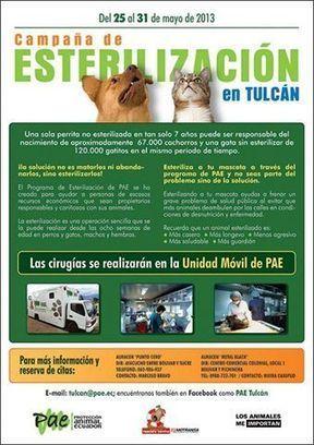 ¡Primera Campaña de Esterilización de... - PAE (Protección Animal Ecuador) | Facebook | Veterinaria | Scoop.it