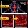 Führt zu einer schnellen Muskelaufbau