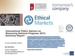 Video: Enough Is Enough - EthicalMarkets.com   Peer2Politics   Scoop.it