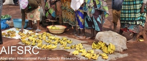 Australian International Food Security Research Centre News | Food Security | Scoop.it