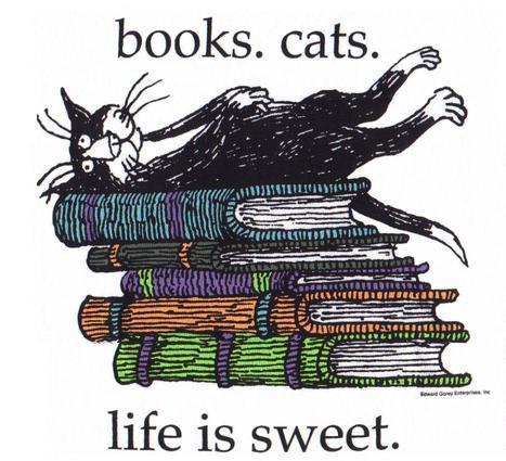Bibs, libraires, discos, lecteurs...   Médiathèque numérique   Scoop.it
