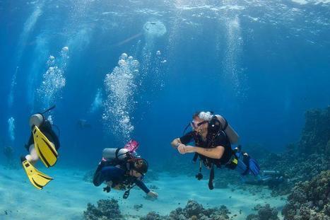Red Sea Divin   Blue sky travel   Scoop.it
