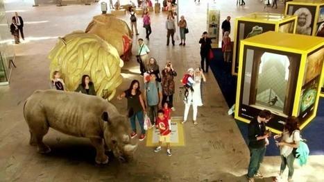 Pays-Bas : Nouvelle campagne de réalité augmentée pour National Geographic - Ooh-tv | réalitée augmentée | Scoop.it