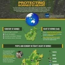 Protecting Borneo's Heart | Visual.ly | Scoop Indonesia | Scoop.it