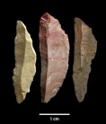 Early humans tooled up | Scientificus | Scoop.it