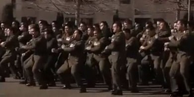 Soldiers' farewell haka footage goes viral - National - NZ Herald News   High-Fidelity Open Learning Resources   Scoop.it