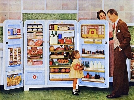 The Internet of Things and the Mythical Smart Fridge | UX Magazine | Emotional Design | Scoop.it