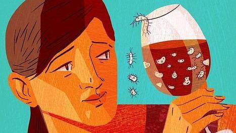 Terroir: how fungi, yeasts and bacteria affect the taste of your wine | Wine | Scoop.it
