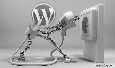 Narmadatech- WordPress Theme Customization | Narmadatech | Scoop.it
