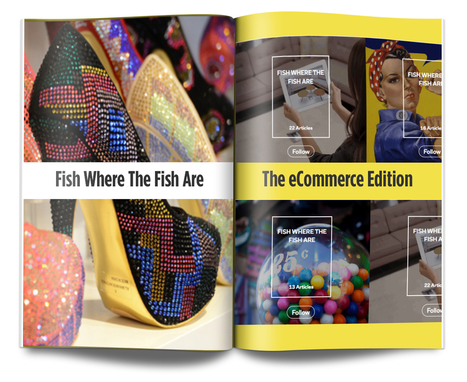 Read The eCommerce Issue - Fish Where The Fish Are | Inbound Digital Marketing with WhiteSpace | Scoop.it