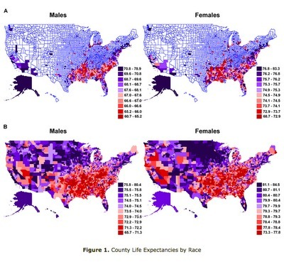 UnderstandingSociety: Health disparities in the US and China | Unlocking the Social Determinants of Health | Scoop.it