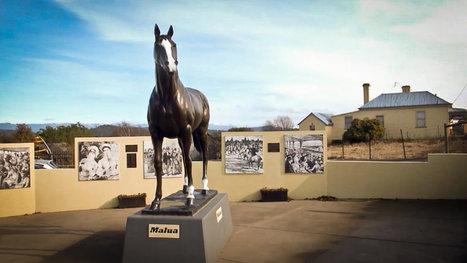 The legend of champion horse Malua | ABC Open Northern Tasmania | Scoop.it