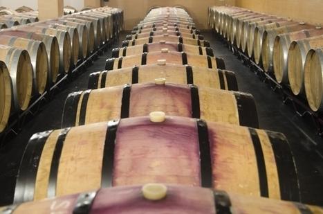 La filière viticole-vinicole, en pleine innovation ! | Actus Vins | Scoop.it