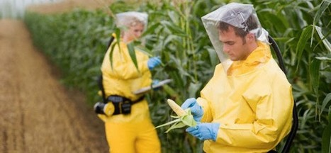 Monsanto Demands World Health Organization Retract Cancer Claims | Daily Crew | Scoop.it