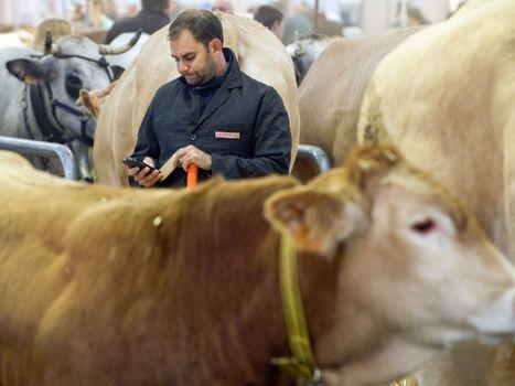 Primes d'activité, précarité, suicides... ces signes de la détresse persistante du monde agricole | Gardarem les paysans | Scoop.it