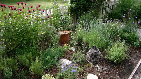 Edible landscaping: Eat your beautiful yard | Landscape Design | Scoop.it