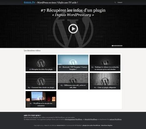 6mn.tv une chaine d'info sur ... Wordpress ! | Entrepreneurs du Web | Scoop.it