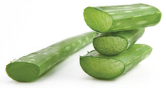 Aloe Vera Juice Benefits | Aloe Vera Juice | Scoop.it
