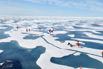 NASA mission finds massive algal blooms under Arctic sea ice | Amazing Science | Scoop.it