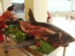 Foto de tubarão servido inteiro em resort na Tunísia cria polêmica na web | Polêmica na Internet | Scoop.it