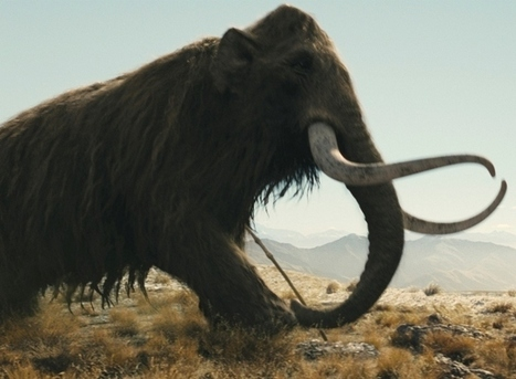 Couple's backyard dig fuels major scientific debate over what caused mammoth extinction | Vloasis sci-tech | Scoop.it