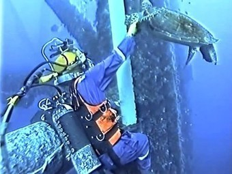 Oil Rig Diver Confronted by an Angry Sea Turtle (Video) | Bookyourdive | Scoop.it