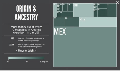 How much Hispanics matter in 2012 — in one chart | data visualization US Election | Scoop.it