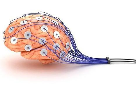 Brain-machine interface capable of learning - E & T Magazine | Cyborg Lives | Scoop.it