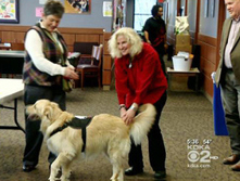 """Pets With Heart"" Program A Stress Reliever For Carlow University Students - CBS Pittsburgh 