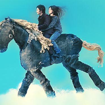 Le cheval qui murmurait à l'oreille des humains | Idées et rencontres pour changer le monde ou juste le coin de la rue | Scoop.it