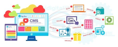 Custom CMS Website Design that Takes Your Business Ways ahead Your Expectations!   Digital Marketing   Scoop.it