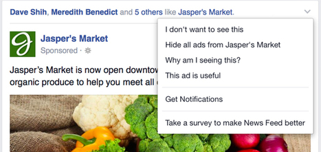 Facebook Is Using User Feedback To Show Better Ads   MarketingHits   Scoop.it