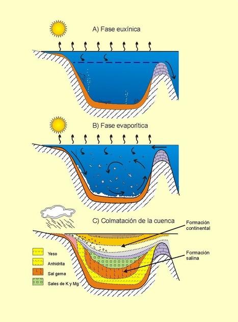 Rocas y yacimientos evaporíticos | Sedimentología | Scoop.it
