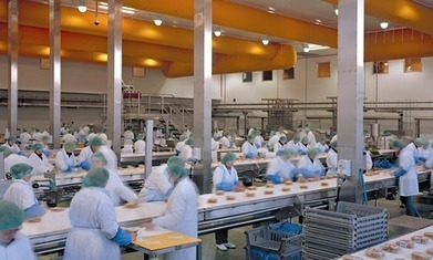 Northampton unemployed outraged over sandwich factory's 'insult' | Teen Article Collection | Scoop.it