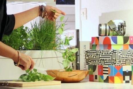 Fresh Square: Un jardin dans votre salon | Startup et innovation | Scoop.it