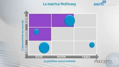 Philippe Gattet,  Comprendre la matrice McKinsey | Analyse Stratégique | Scoop.it