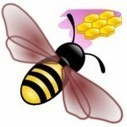Un plugin pour intégrer des mindmaps de freeplane dans wordpress | Edu-mindmaps | Scoop.it