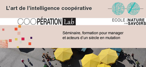 CooperationLab : L'art de la coopération - news | Conscience - Sagesse - Transformation - IC - Mutation | Scoop.it