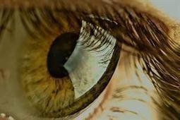 La mitad de los casos de pérdida de visión  pueden evitarse con la detección temprana | Salud Visual 2.0 | Scoop.it