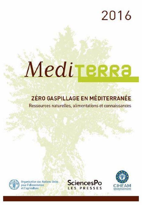 12/16 - A paraître : Mediterra 2016 Zéro gaspillage en Méditerranée : ressources naturelles, alimentations et connaissances | INRA Montpellier | Scoop.it