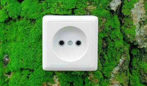 Eficiencia energética: en la empresa y en el hogar - Tus Mejores Páginas | Materiales eléctricos | Scoop.it