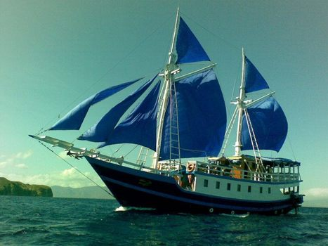 Komodo Liveaboard Diving – a Heavenly Experience | Water Boats | Scoop.it