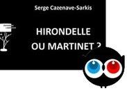 « Hirondelle ou martinet ? » de Serge Cazenave-Sarkis - Ulule | Littérature et autres sujets essentiels | Scoop.it