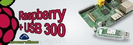 Raspberry PI et EnOcean | Développement, domotique, électronique et geekerie | Scoop.it