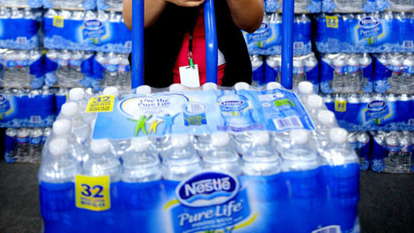Groups want cap on Nestlé's water permit during droughts - Politics - CBC News | Politics | Scoop.it