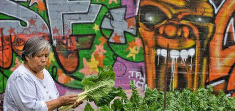 La rue est nous : Le chou-fleur au fusil   ville et jardin   Scoop.it