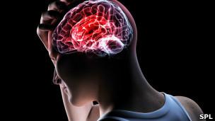 ¿Son útiles las pruebas de inteligencia? - BBC Mundo - Noticias | Cosas que interesan...a cualquier edad. | Scoop.it